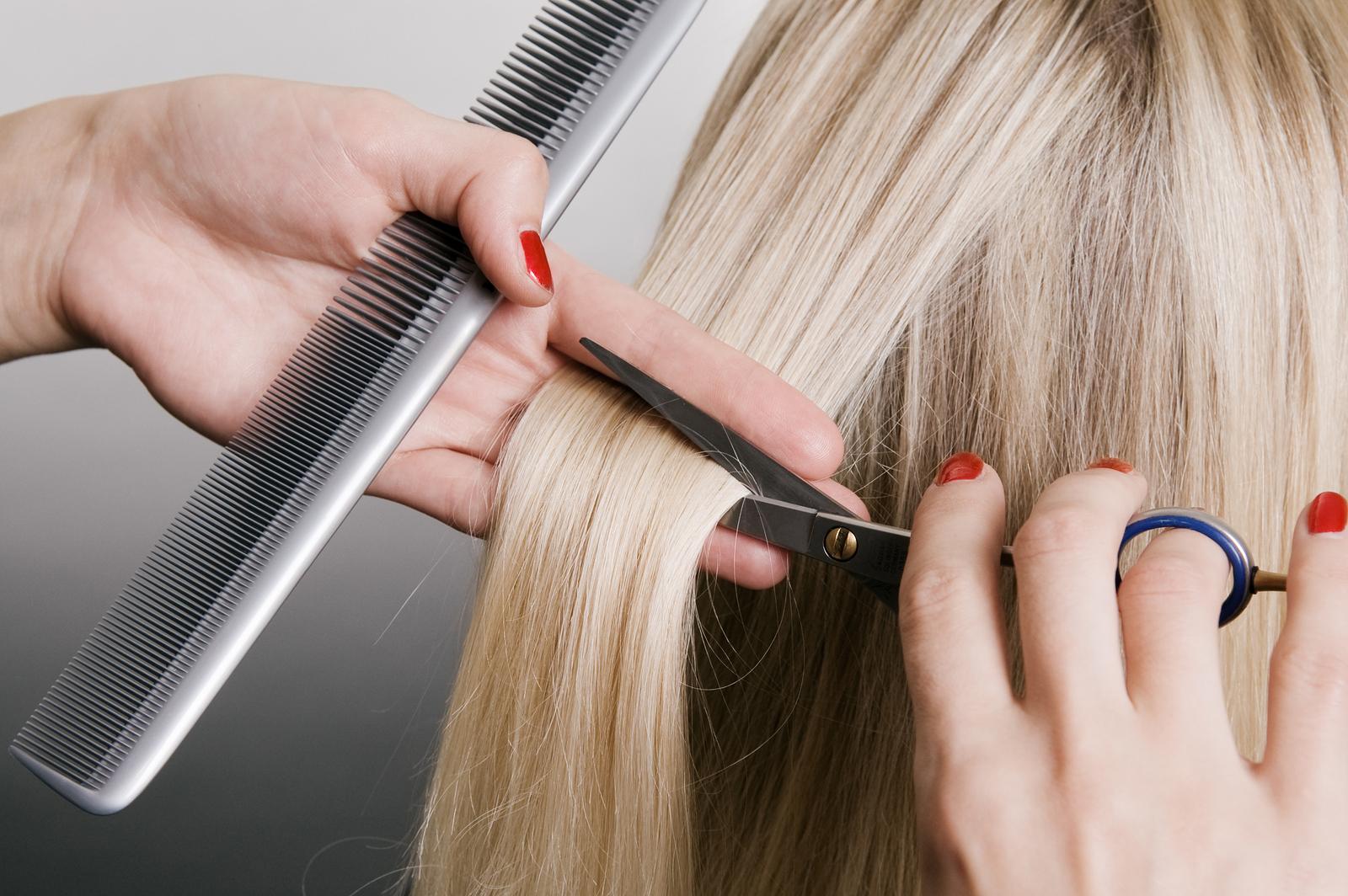 Dubia Hair Artist Courses