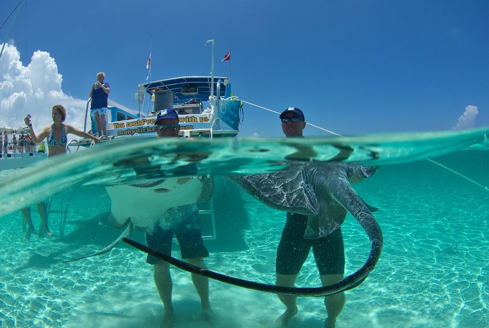 Cayman Islands Skin Course